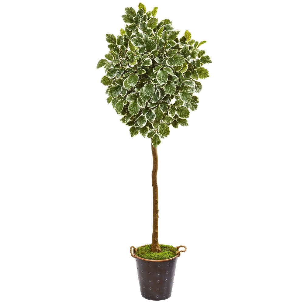 "77"" Variegated Aralia Artificial Tree in Metal Planter"