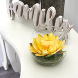 "8"" Lotus Artificial Arrangement in Glass Vase"