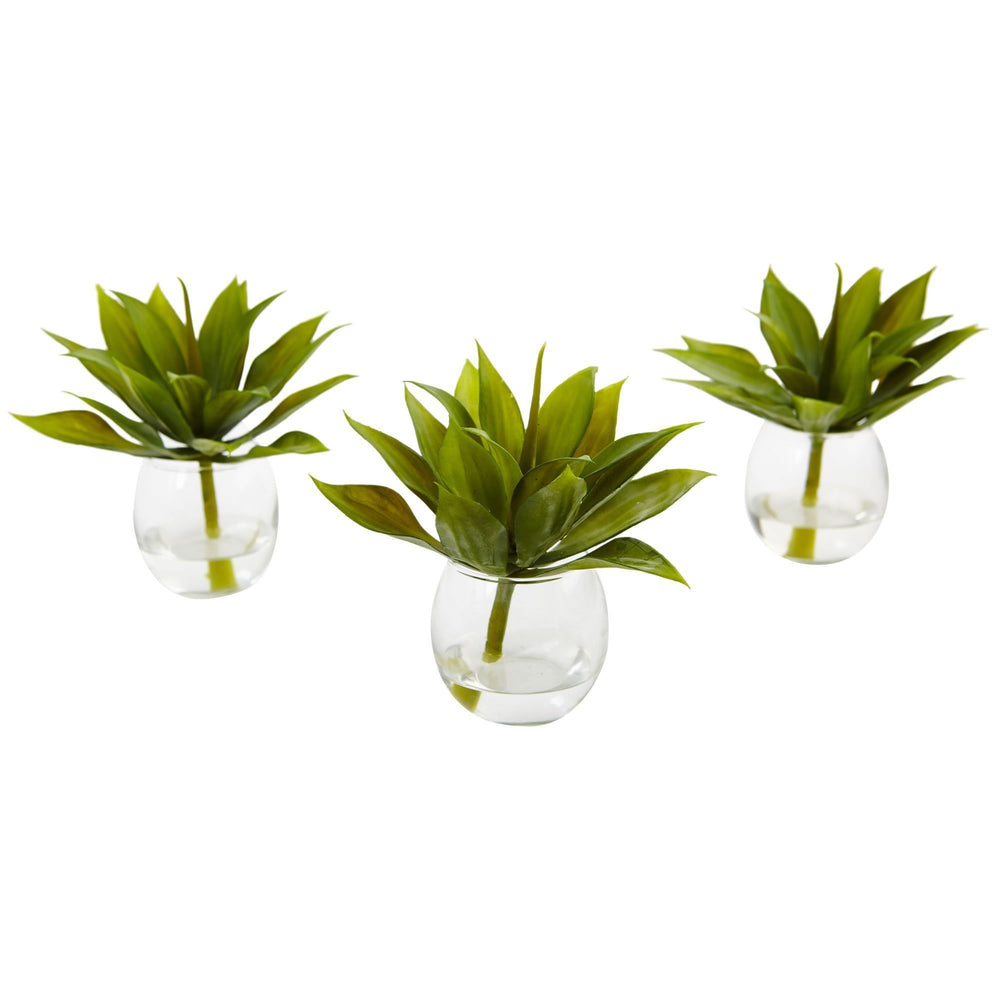 Agave Succulent with Vase (Set of 3)