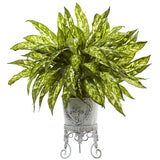 Aglaonema with Metal Planter