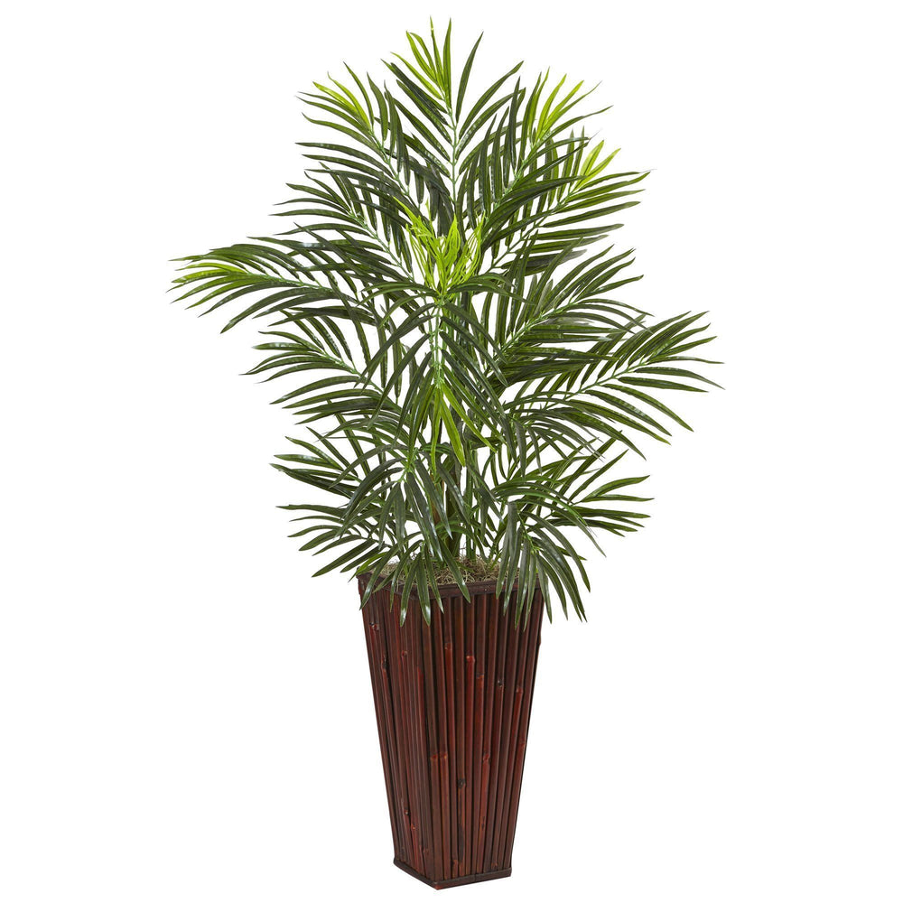 Areca Palm in Bamboo Planter
