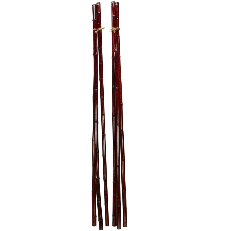 Bamboo Poles (Set of 6)