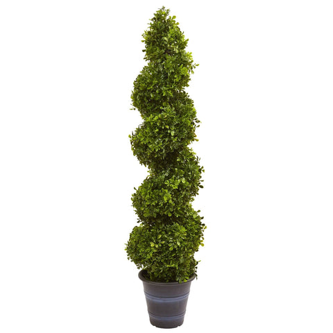 Best Selling - Outdoor Plants