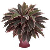 Caladium Artificial Plant in Rose Vase