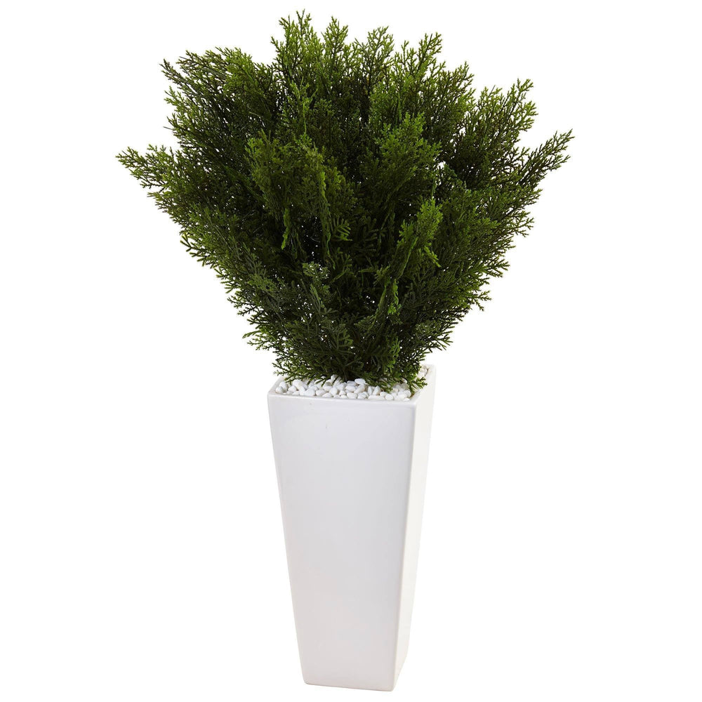 Cedar in White Tower Planter
