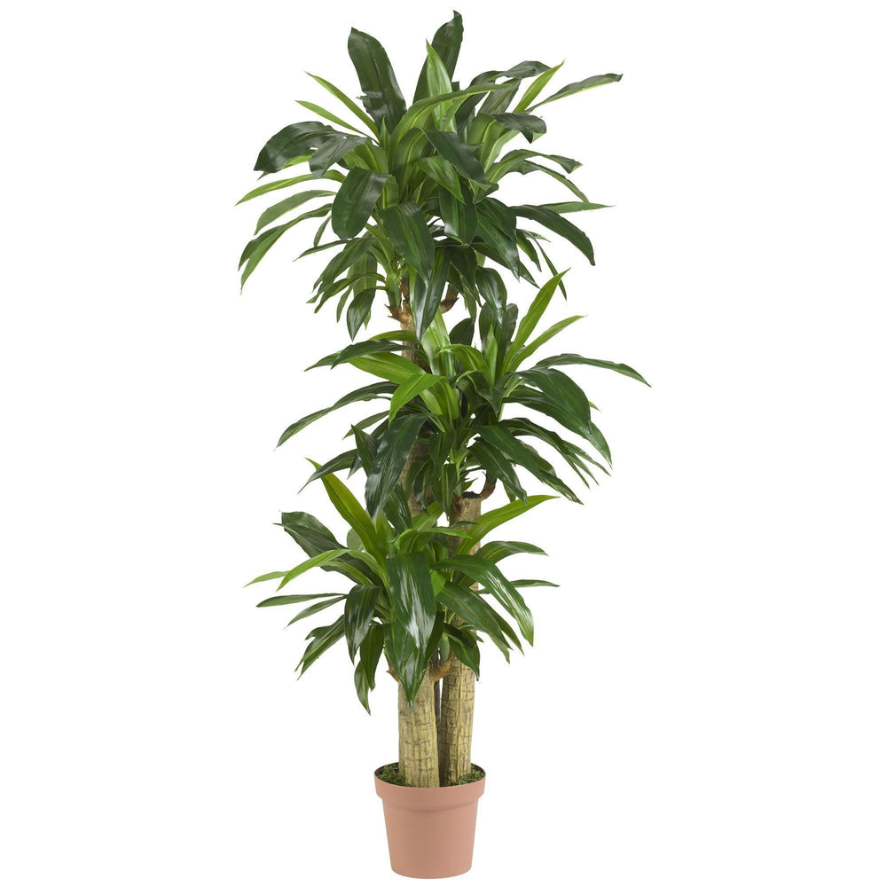 Corn Stalk Dracaena Silk Plant (Real Touch)