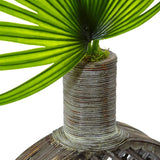 Fan Palm in Open Weave Vase