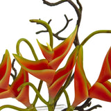 Heliconia in Glass Vase