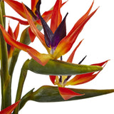 Large Birds of Paradise in Vase