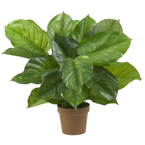 Silk Philodendron Plants