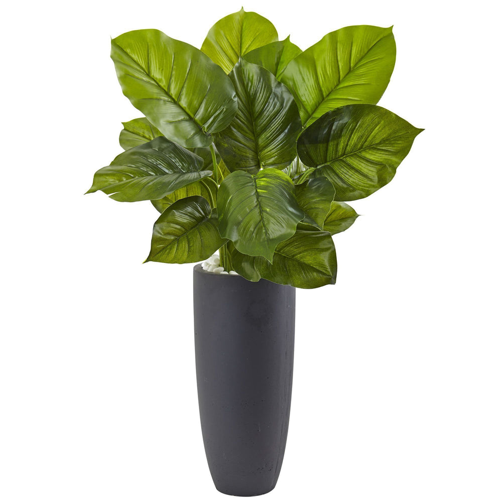 Large Leaf Philodendron with Gray Cylindrical Planter