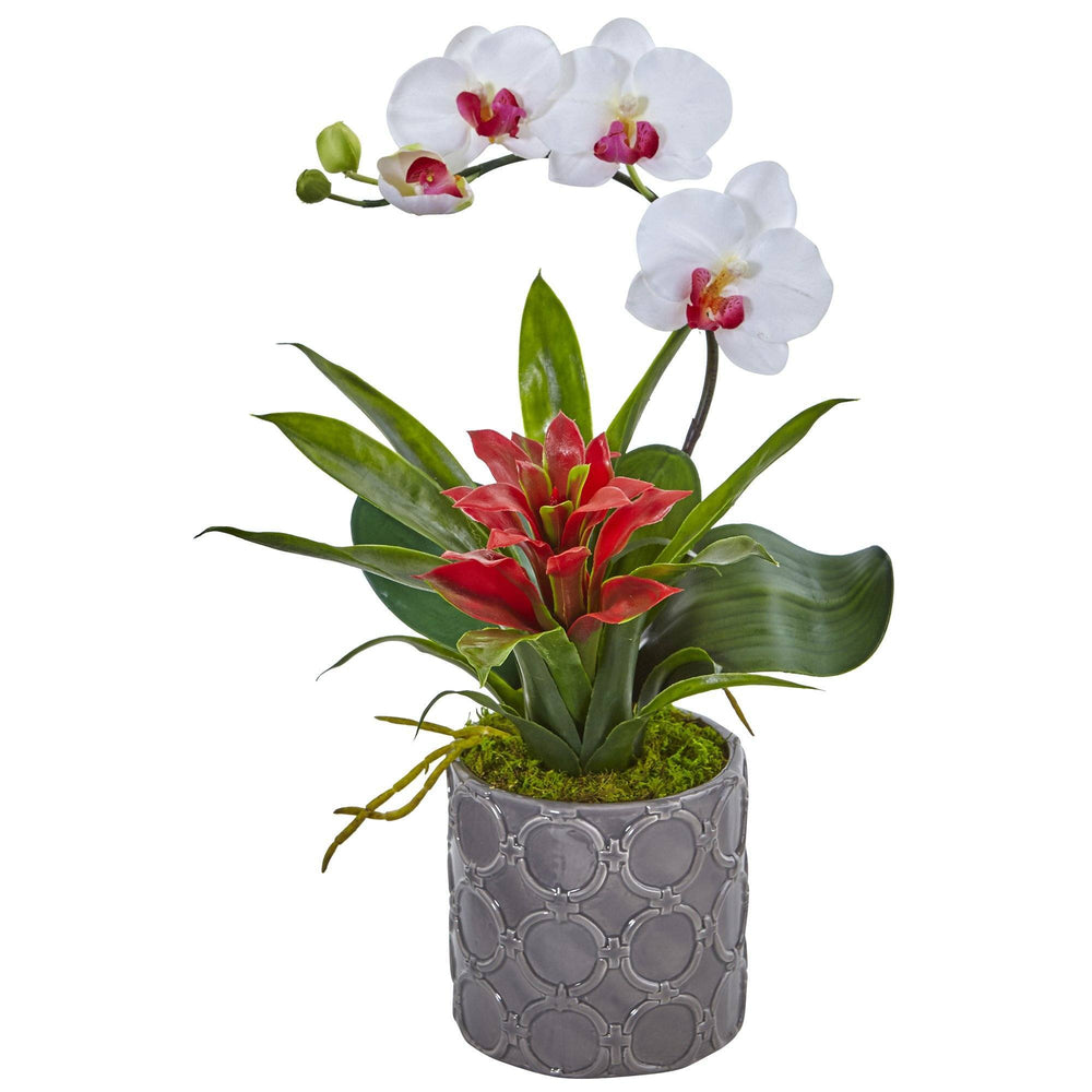 Mini Phalaenopsis Orchid and Bromeliad in Gray Vase