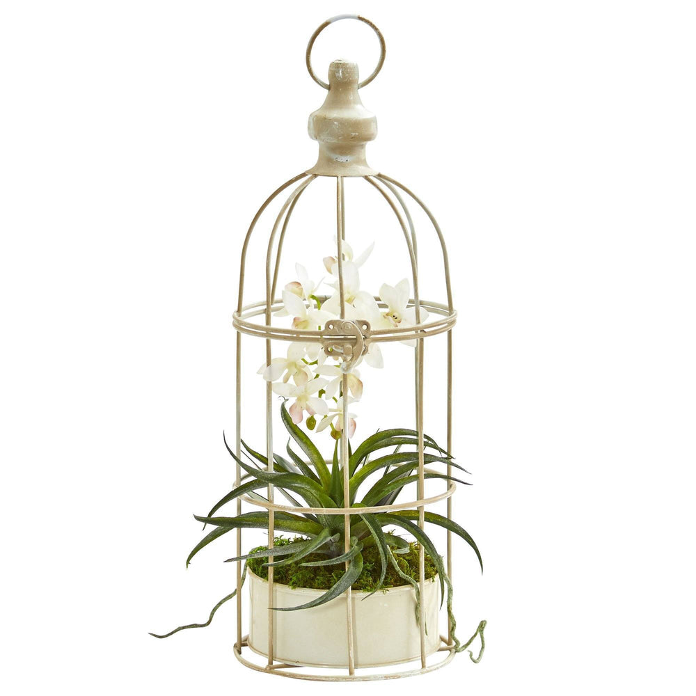 Mini Phalaenopsis Orchid Artificial Arrangement in Bird Cage