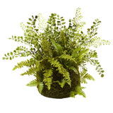 Mixed Fern w/Twig and Moss Basket