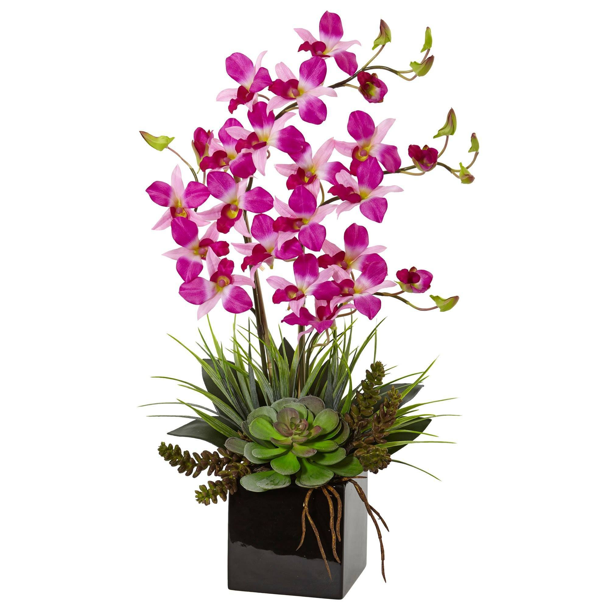 Orchid And Succulent Arrangement In Black Vase 1511 Nearly Natural