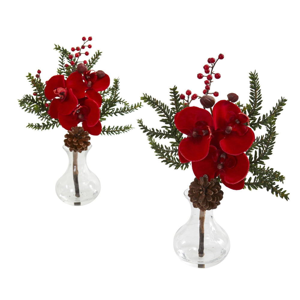 Phalaenopsis Orchid, Berry and Pine Artificial Arrangement (Set of 2)