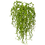 Senecio Artificial Succulent (Set of 3)