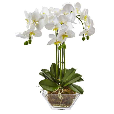 Artificial and Silk Orchids Plants