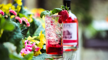 World Gin Day Elderflower Blush