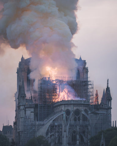 Notre dame cathedral fire - bees