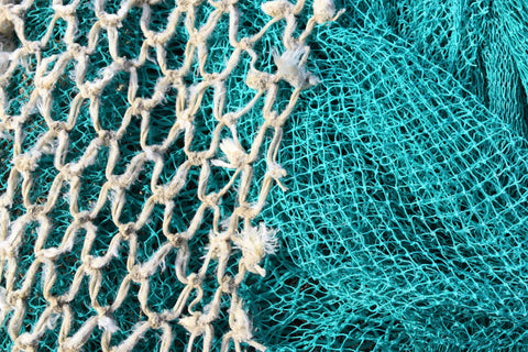 Picture of plastic fishing nets courtesty of Waldemar Brandt on Unsplash