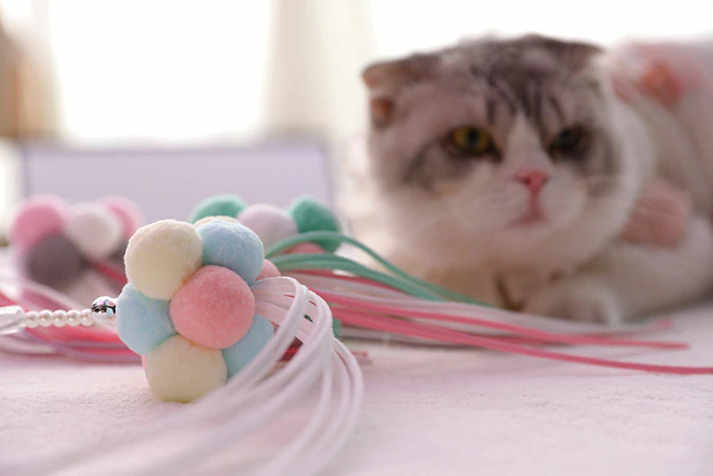 Wand Toy for Cats