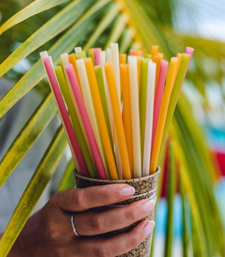 Edible Straws (eco friendly) - 100% natural, gluten-free, vegan.
