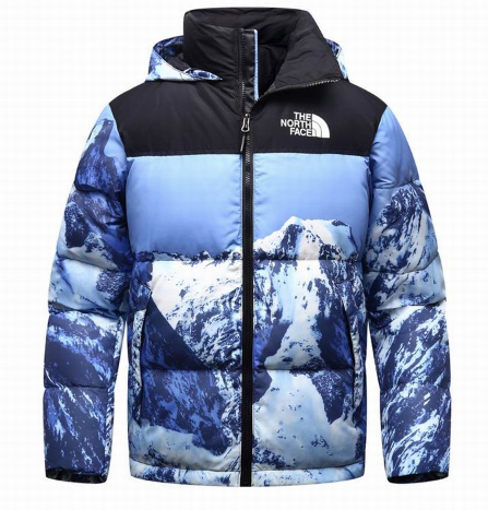 North Face Jacket 2020 Nieve - TrickyShopper
