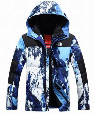 North Face Jacket 2020 Montaña - TrickyShopper