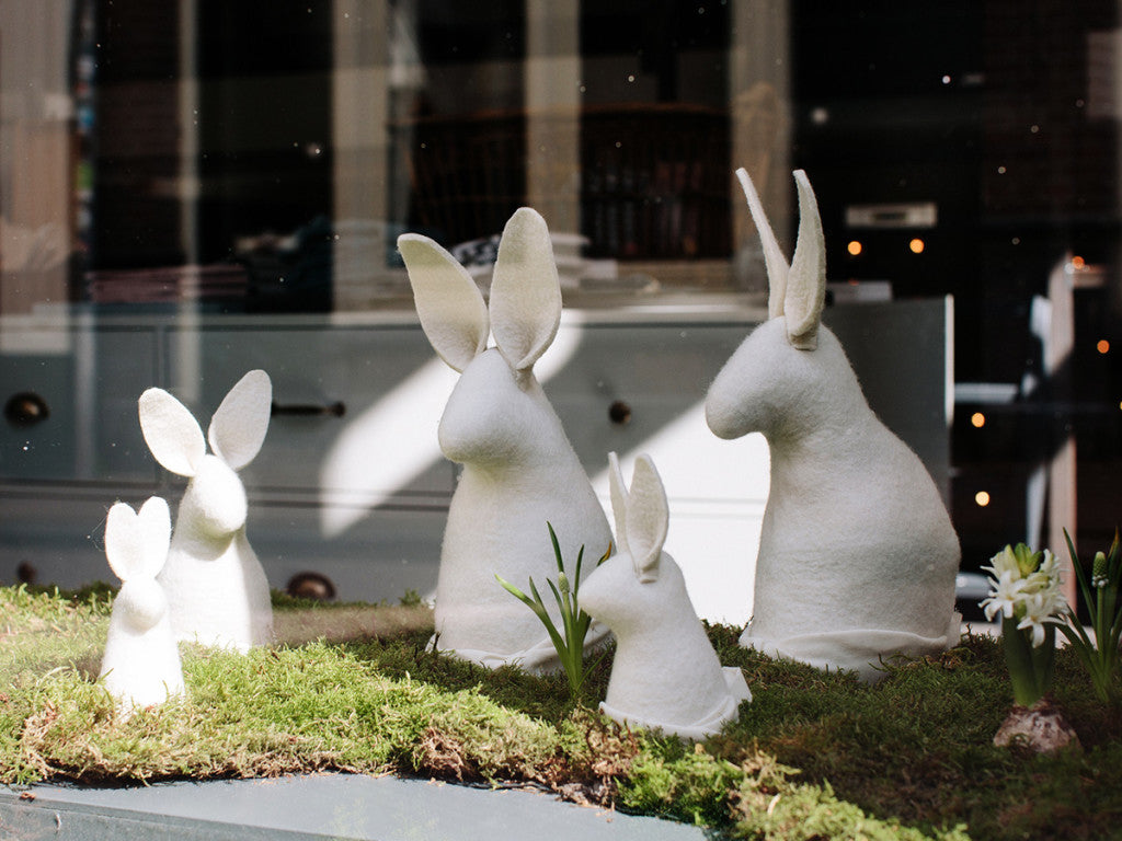 South African Bunnies in the window