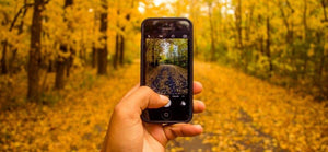 Capture autumn colour on your phone