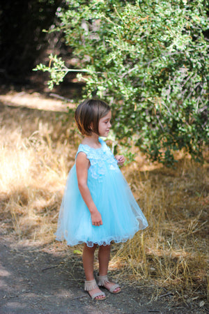 Girl Floral Aqua Blue Tulle Dress, Flower Girl, Pageant, Wedding, Party, Special Occasion