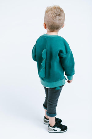 Little Boy Cute Green Dino Monster Crew Neck Sweater with Eyes and Dinosaur Spikes, Party School Casual Animal, Size 2T - 6
