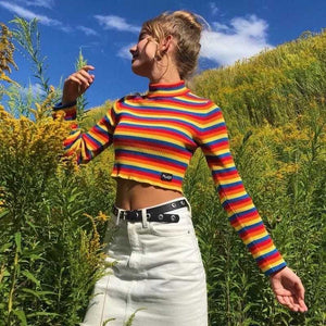 Colorful Rainbow Stripes Cropped Turtleneck Sweater Long Sleeve