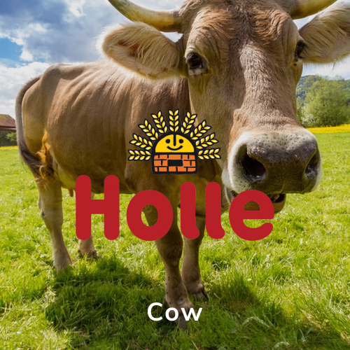 Holle Germany Cow
