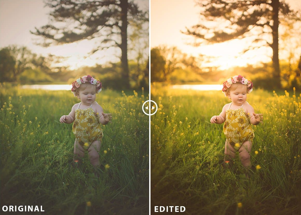 sunlight lightroom presets free