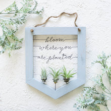 Load image into Gallery viewer, Bloom Where You Are Planted | Air Plant Holder