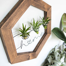Load image into Gallery viewer, Home | Air Plant Holder
