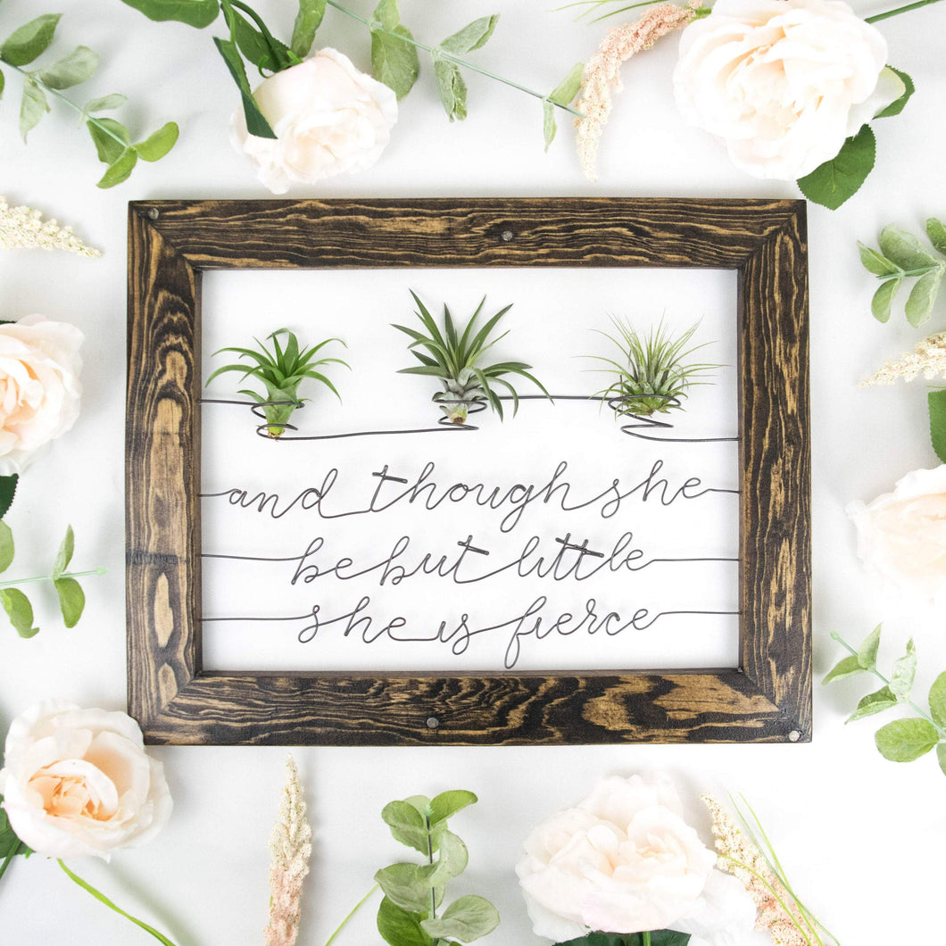 And Though She Be But Little She Is Fierce • Air Plant Holder - rustandglam