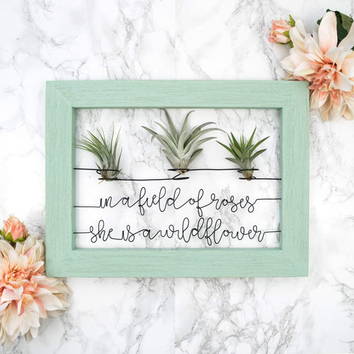 In A Field of Roses She Is A Wildflower • Air Plant Holder - rustandglam