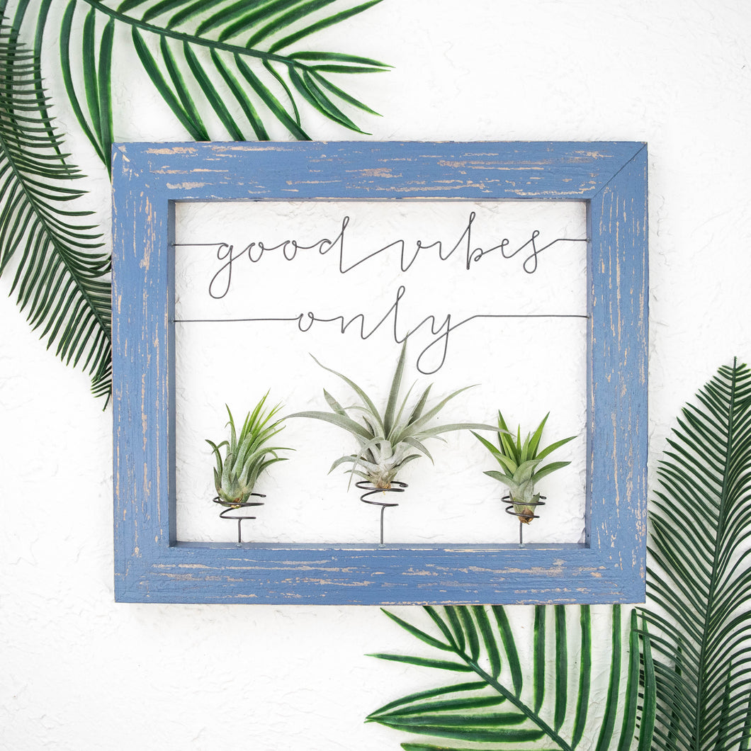 Good Vibes Only | Air Plant Holder