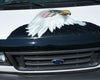 bald eagle with american flag decal on the hood of a white van