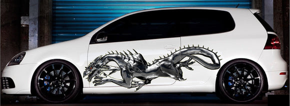 automotive dragon decals kit