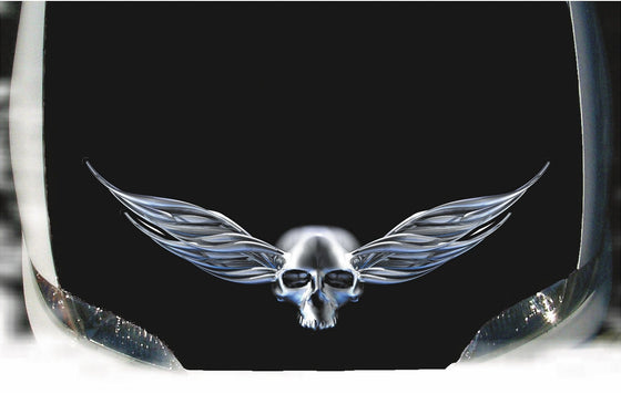 chrome winged skull decal on car hood