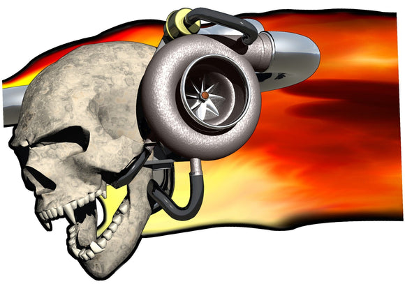 skull flame f150 decals