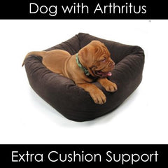 Bowser Dutchie Orthopedic Dog Beds for Senior Dogs with Arthritus - Machine Washable - Memory foam