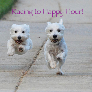 Yappy Hour Cypress Inn Carmel Calfironia Pet Friendly Hotels in California