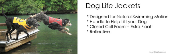 The best dog life jacket for swimming - sailing - surfing -