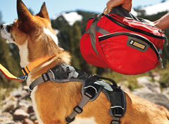 Palisades Dog Backpack II