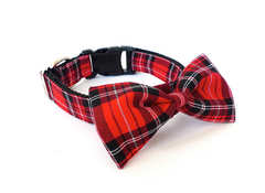 Bow Tie Dog Collars